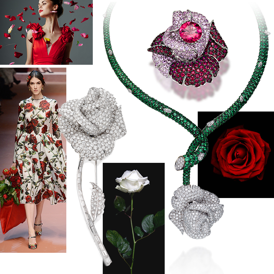 Clockwise from upper left – Fashion Image from Getty Images, PICCHIOTTI Rose Necklace with Tsavorites and Diamonds set in 18K Yellow and White Gold, PICCHIOTTI Rose Ring with Diamonds, Pink Sapphires, Rubies and Rubellite, PICCHIOTTI iconic Rose Brooch, Dolce & Gabbana