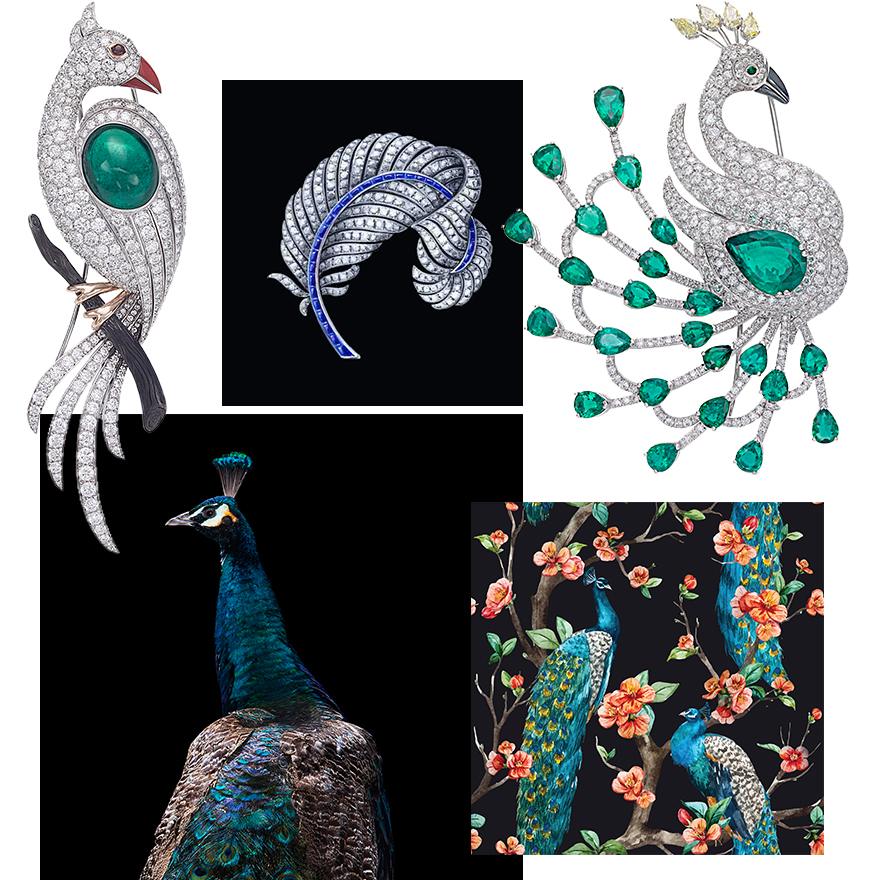 """Clockwise from upper left – PICCHIOTTI """"Masterpieces"""" Peacock Brooch in White Diamonds and cabochon Emerald, CAD design of PICCHIOTTI Feather Brooch, PICCHIOTTI """"Masterpieces"""" Full Fan Peacock Brooch with White Diamonds, Pear Shaped Emeralds, Fancy Yellow Diamonds and Hematite, Peacock Art Photography"""